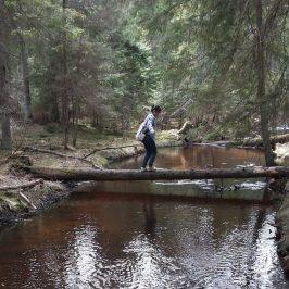 Lietuva. Dvi azijietės ir vienas milžinas pelkėje